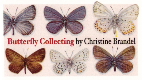 Butterfly Collecting